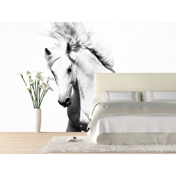 Our Black and white Wall Murals are the perfect choice to add a dramatic  impact to any room with our photo wallpaper  Customize your wall mural and  create a. horse murals   Google Search   Children s Rooms   Pinterest