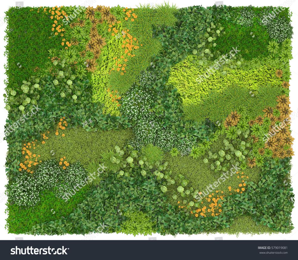 Vertical Garden Background Texture Green Wall Stock Illustration Vertical Garden Garden Illustration Green Wall