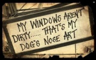 ive had dog art on my windows for about a year now without washing it off once. such a dedicated mother ;)