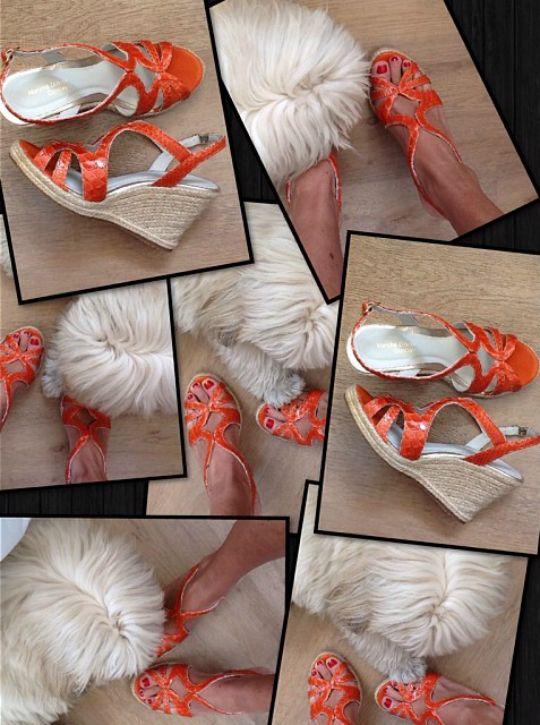 eafb968600 Detalhe da sandália gladiadora linda em python - Foto  Divulgação ...