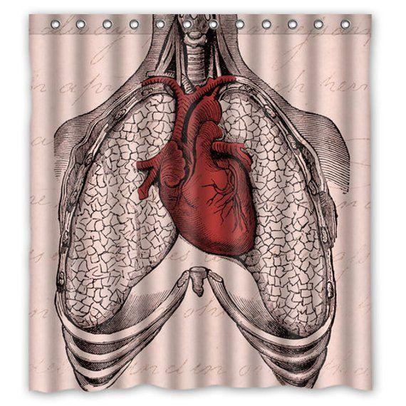 Anatomy Heart Lungs Shower Curtain