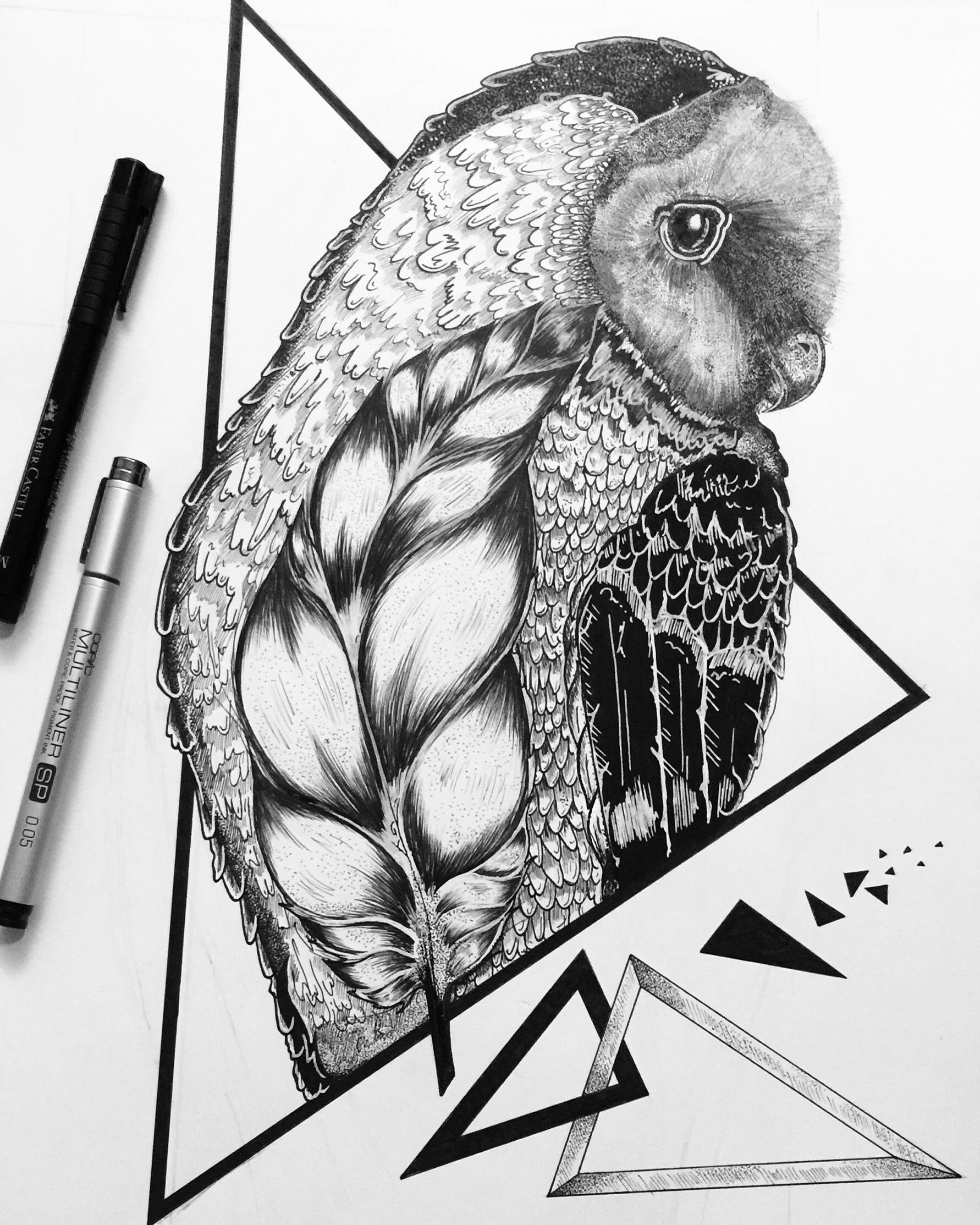 Ink Sketch Of A Barn Owl Drawing Art Abstract