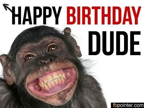 Pin By Simone Van On Birthday Greetings Monkeys Funny Cute Funny Animals Smiling Animals