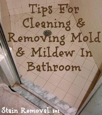 Tips For Cleaning And Removing Mold Mildew In Bathroom On Stain Removal 101