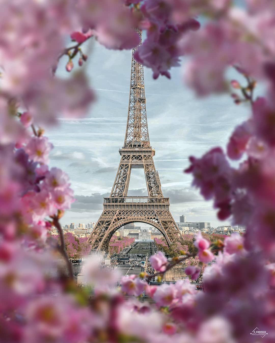 Картинки с эйфелевой башней с цветами