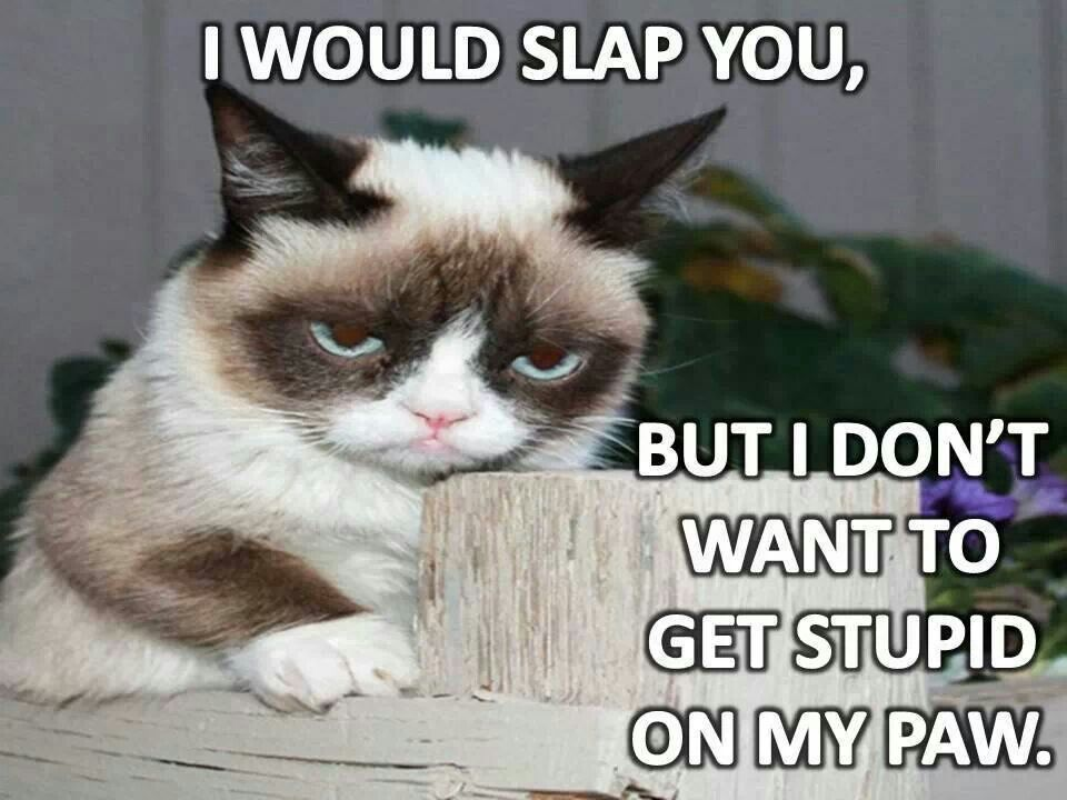 Teacher And Student Funny Quotes also Title further Grumpy Kitty Awesome Quotes further 440930619737896424 in addition 20 Funny Winter Weather Cartoons. on my annoying little brother is awesome