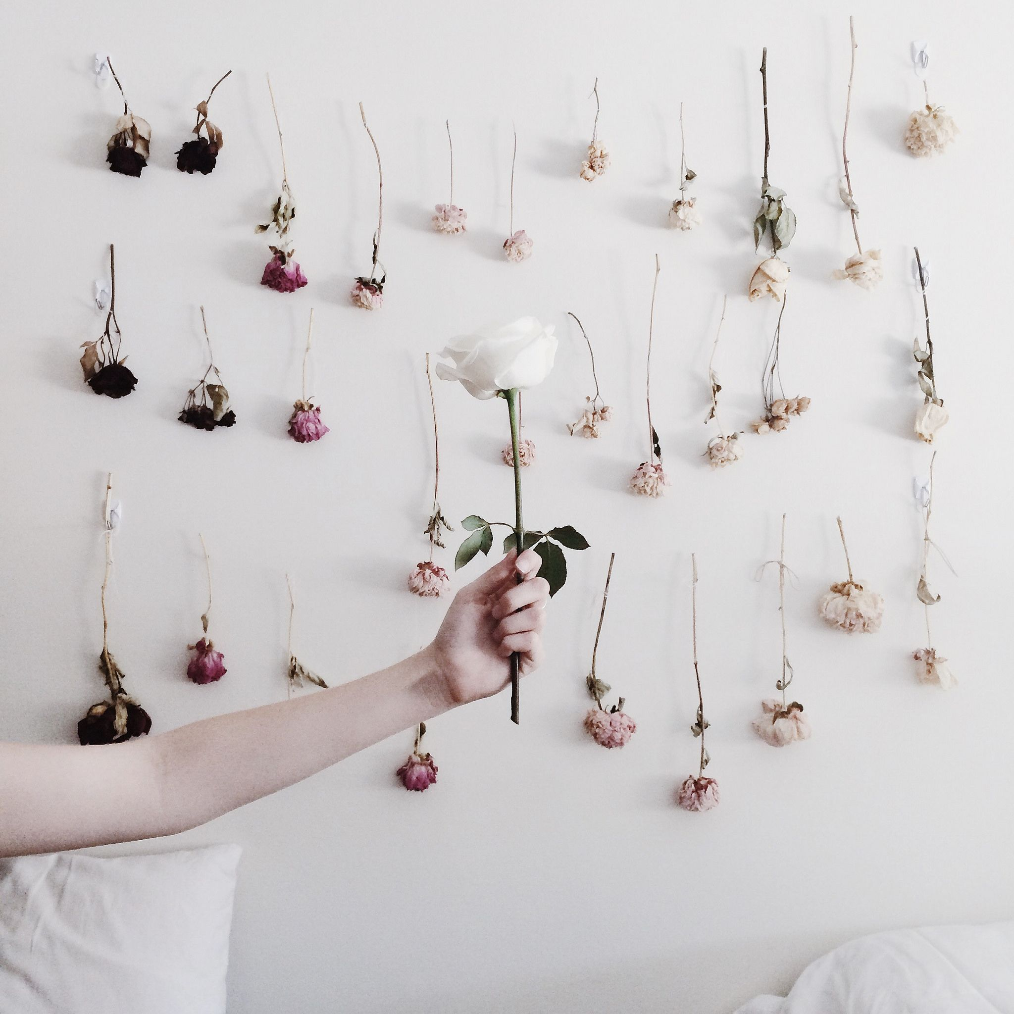 How To Preserve Flowerake A Dried Flower Wall On Juliettelaura Blo