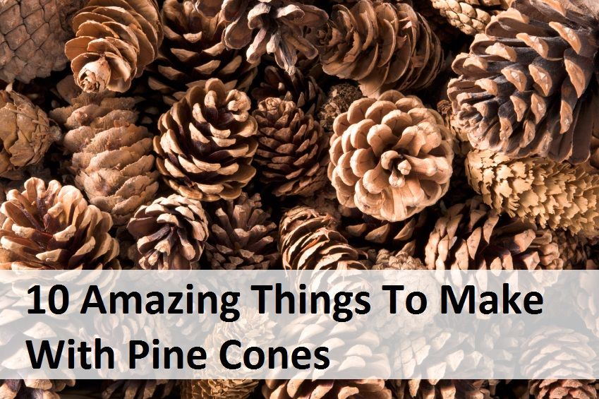 This list has 10 amazing crafts to make using pine cones for Things to make with fir cones
