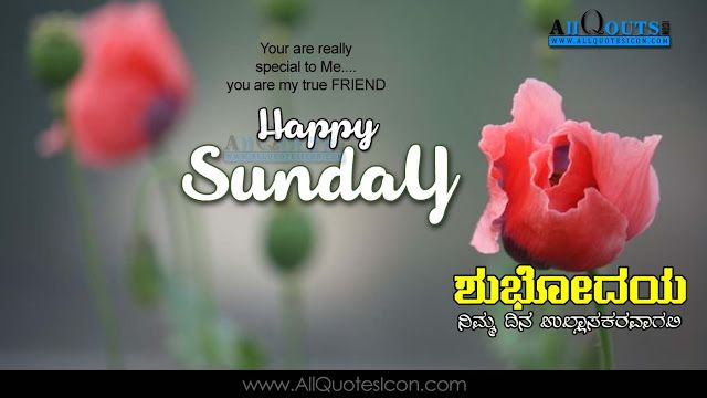 Kannada good morning quotes wshes for whatsapp life facebook happy sunday images best kannada good morning quotes pictures with friends messages voltagebd Choice Image