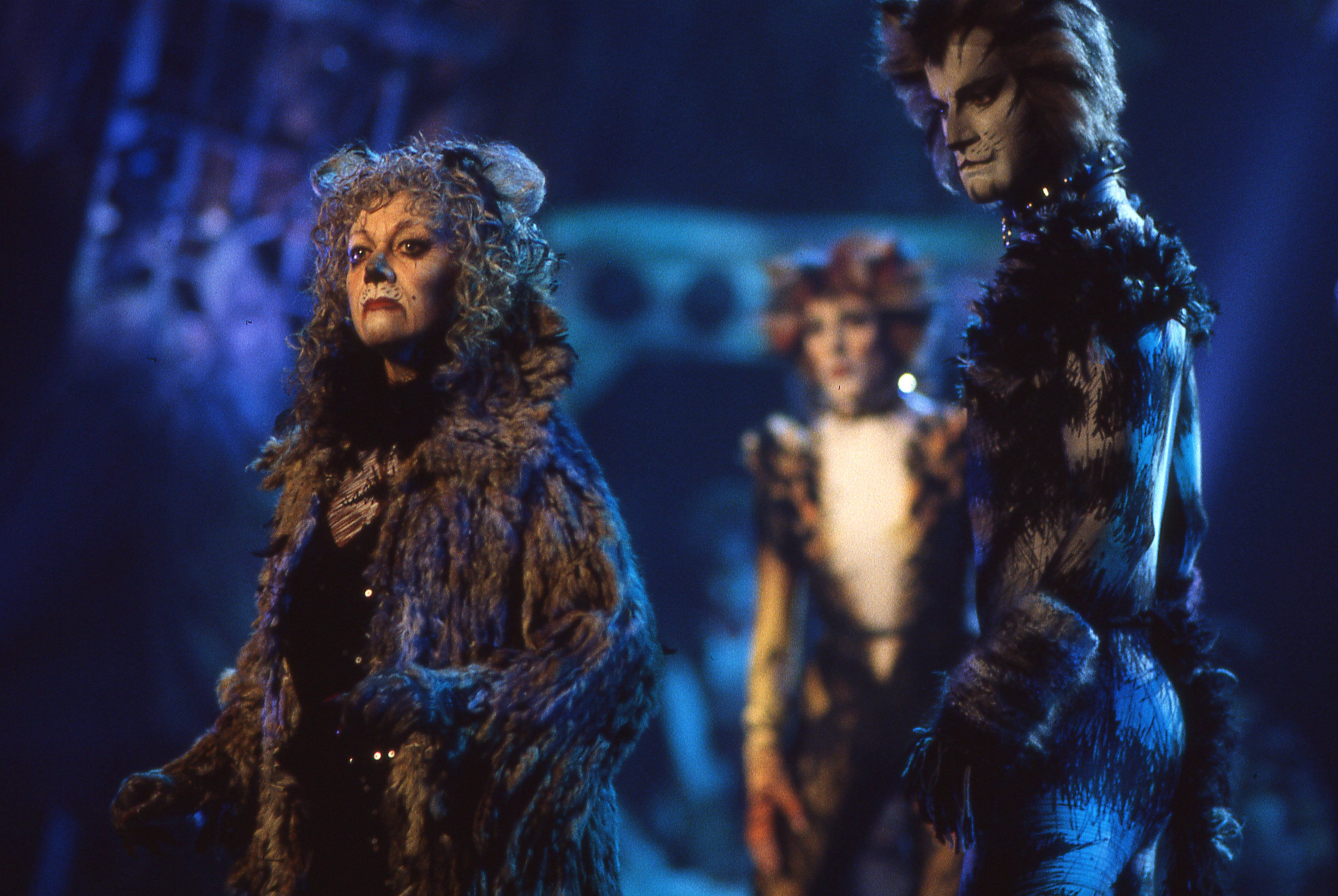 Cats On Screen Cats The Musical Cats Musical Cats Cast Jellicle Cats