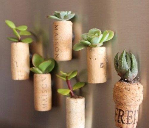 Compartimos una manera de plantar en corchos. Es un método muy facil que solo requiere paciencia y meditación. :) Materiales:  Corchos Algo en punta para ahuecar el corcho Iman Pistola adhesiva o pegamento Cactus  Paso a paso: Primero perforar los corchos.       Una vez perforados pegamos el iman en uno de los costados del corcho:    Colocamos la tierra y el cactus:      A pegarlos en la pared ! sea en la heladera o marcos metálicos: