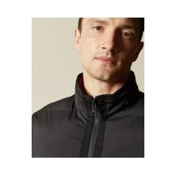 Photo of Dicke Steppjacke Ted BakerTed Baker