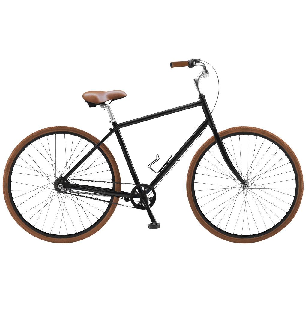 Priority Classic Plus Bicycle Bike Riding Benefits Commuter Bike