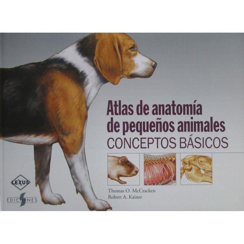 Contiene imágenes del perro, el gato, el conejo, la rata, y la ...