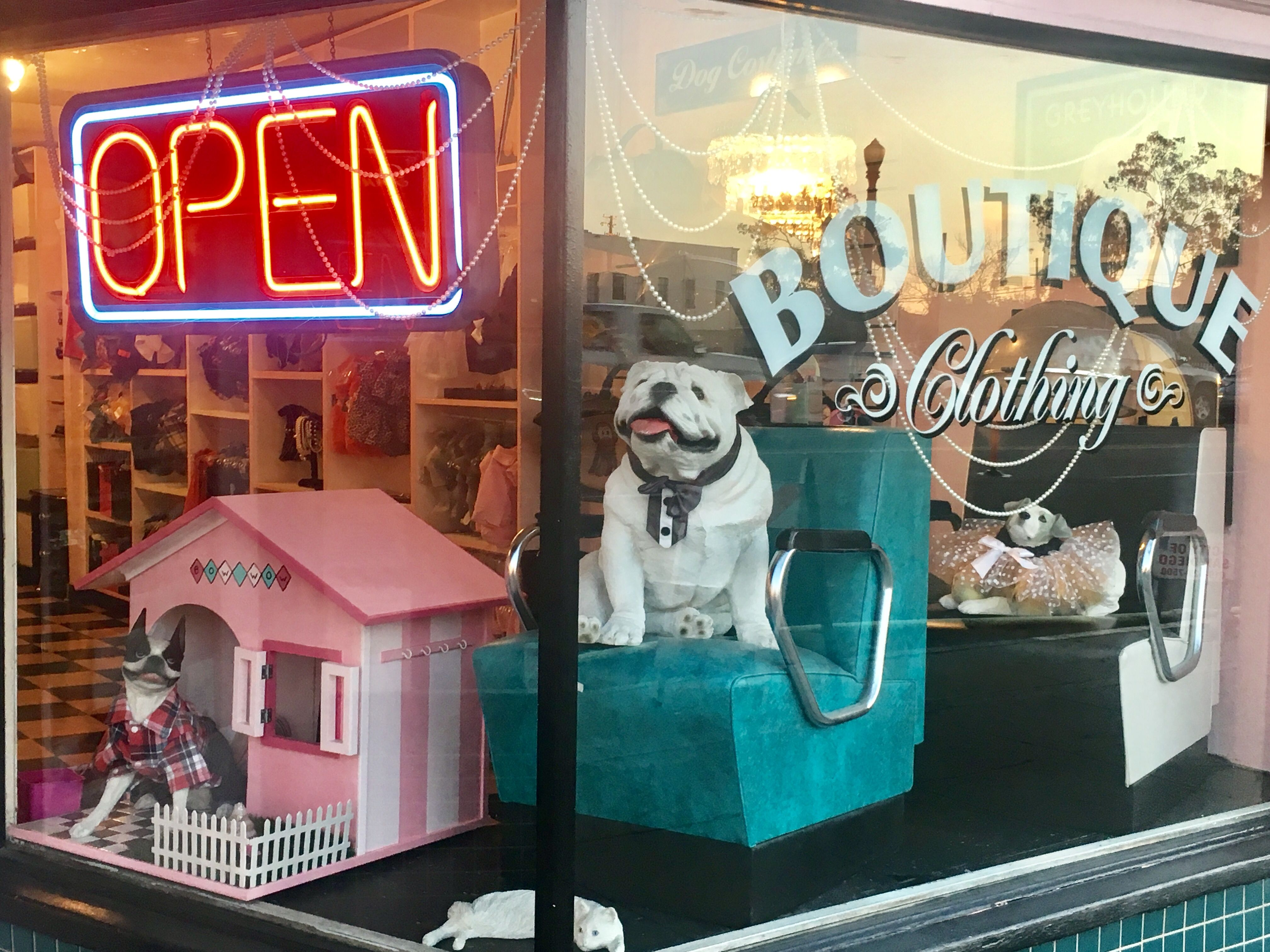 Our Crazy Retro Window Yes Working Drying Chairs Petboutique Petgroomingsalon Pet Boutique Dog Grooming Salons Dog Boutique