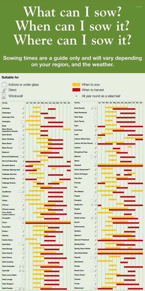 Vegetable planting chart what to sow when where its  green life also rh pinterest
