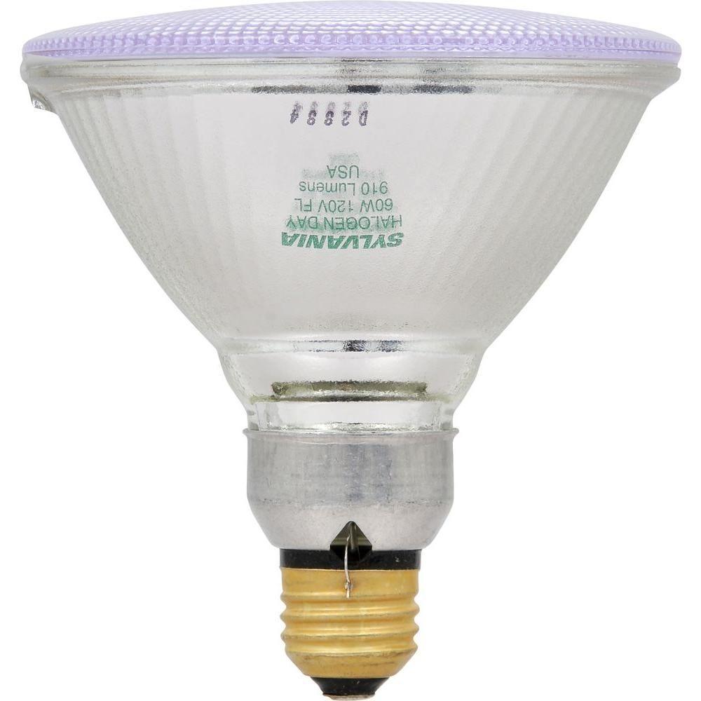 Sylvania outdoor flood light bulbs httpjohncow pinterest sylvania outdoor flood light bulbs aloadofball Choice Image
