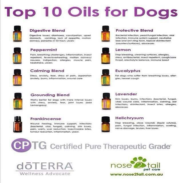 Pin By Ginger Newman On Apothecary Essential Oils