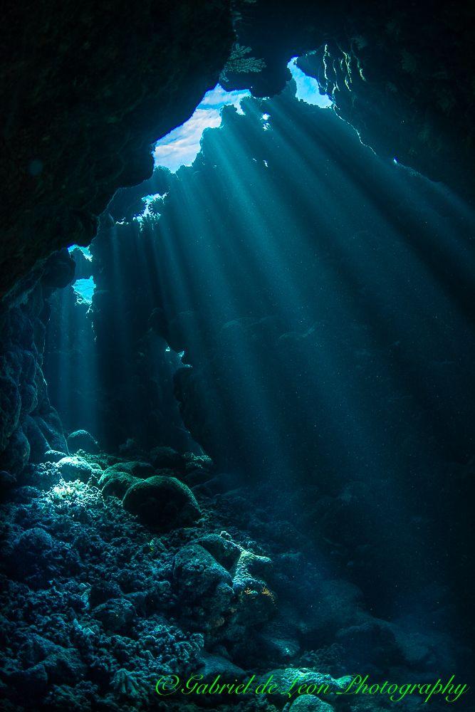 Reef Scapes In 2019 Underwater Art Underwater Caves
