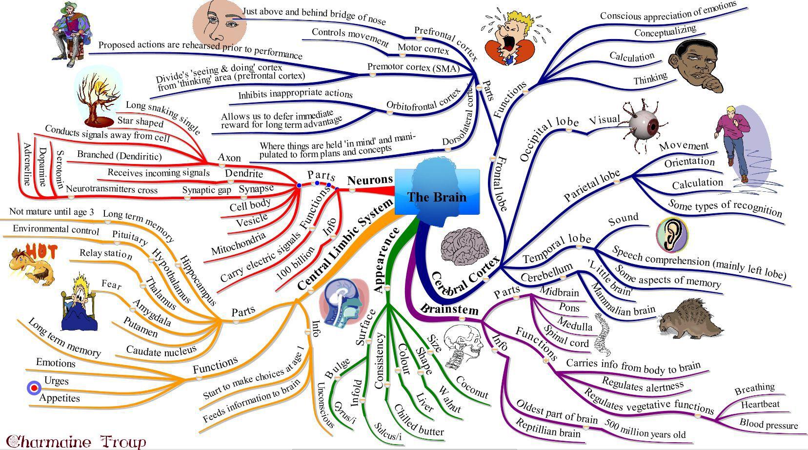 download Internet Marketing