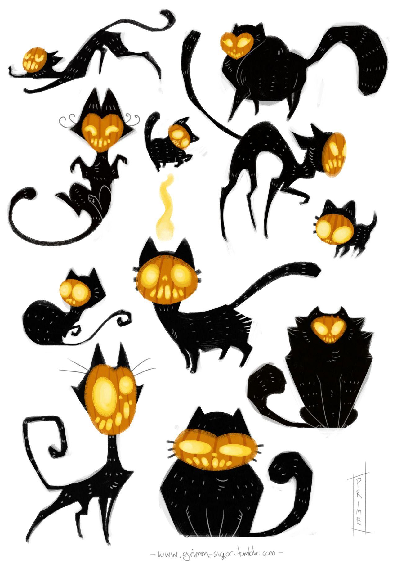 Pin de Ariel Thilly en Chat alors ! | Pinterest | Anatomía animal ...
