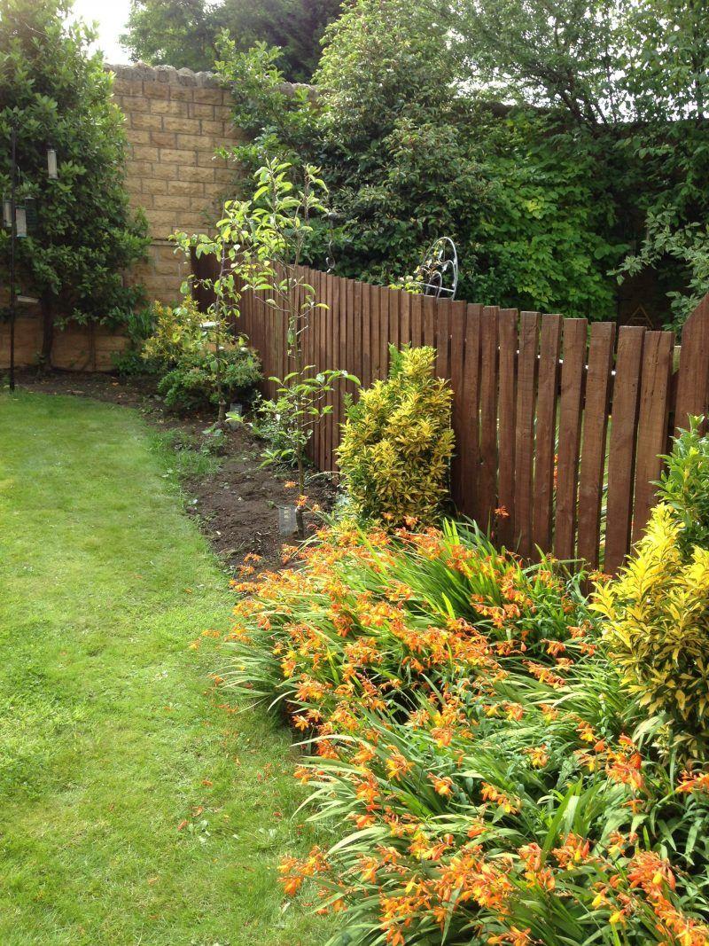 Gartenzaun Und Sichtschutz Rund Um Garten