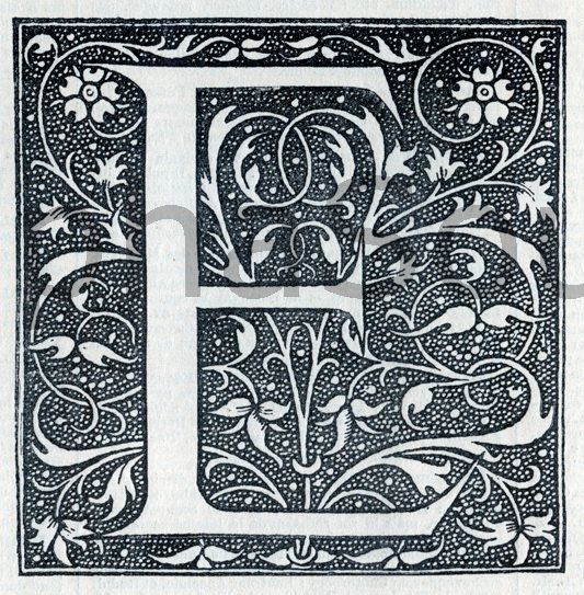 French Letter E Illuminated Lettering Ornate Very Hi by alphasoup
