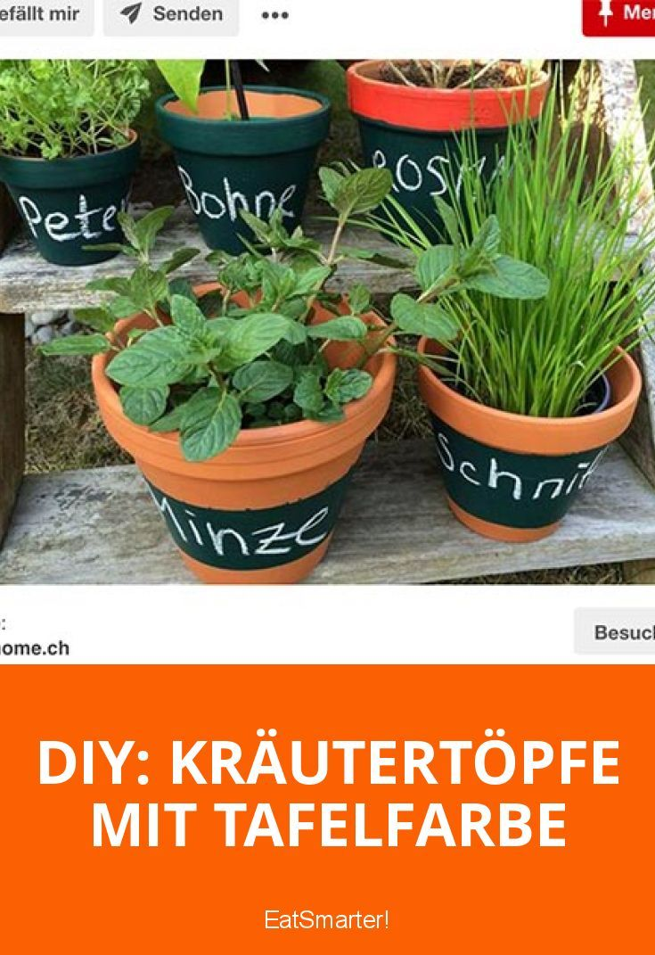 Fresh Herbs Kräutertöpfe – dede14