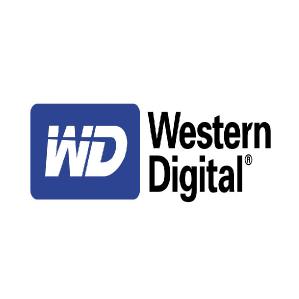 Western Digital Digital Systems Integrator Smart Video