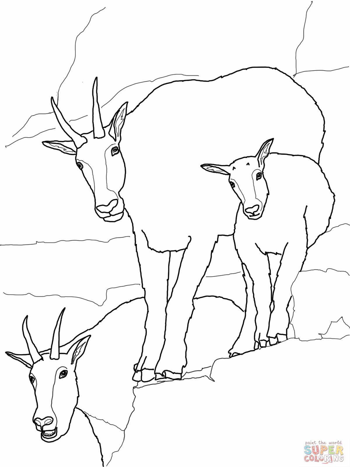 Mountain Goat Coloring Page With Images Animal Coloring Books