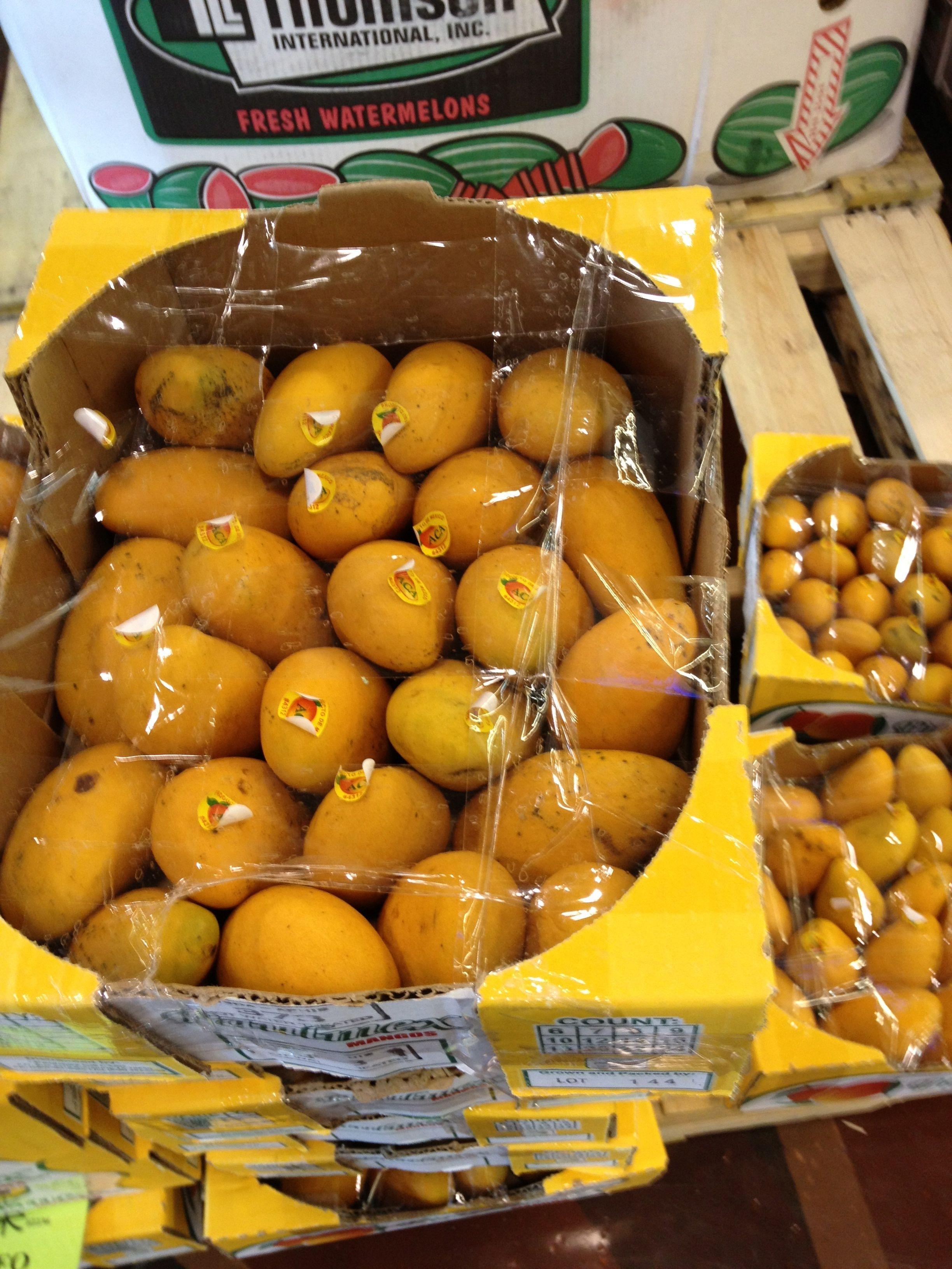 Ataulfo mangoes by the case