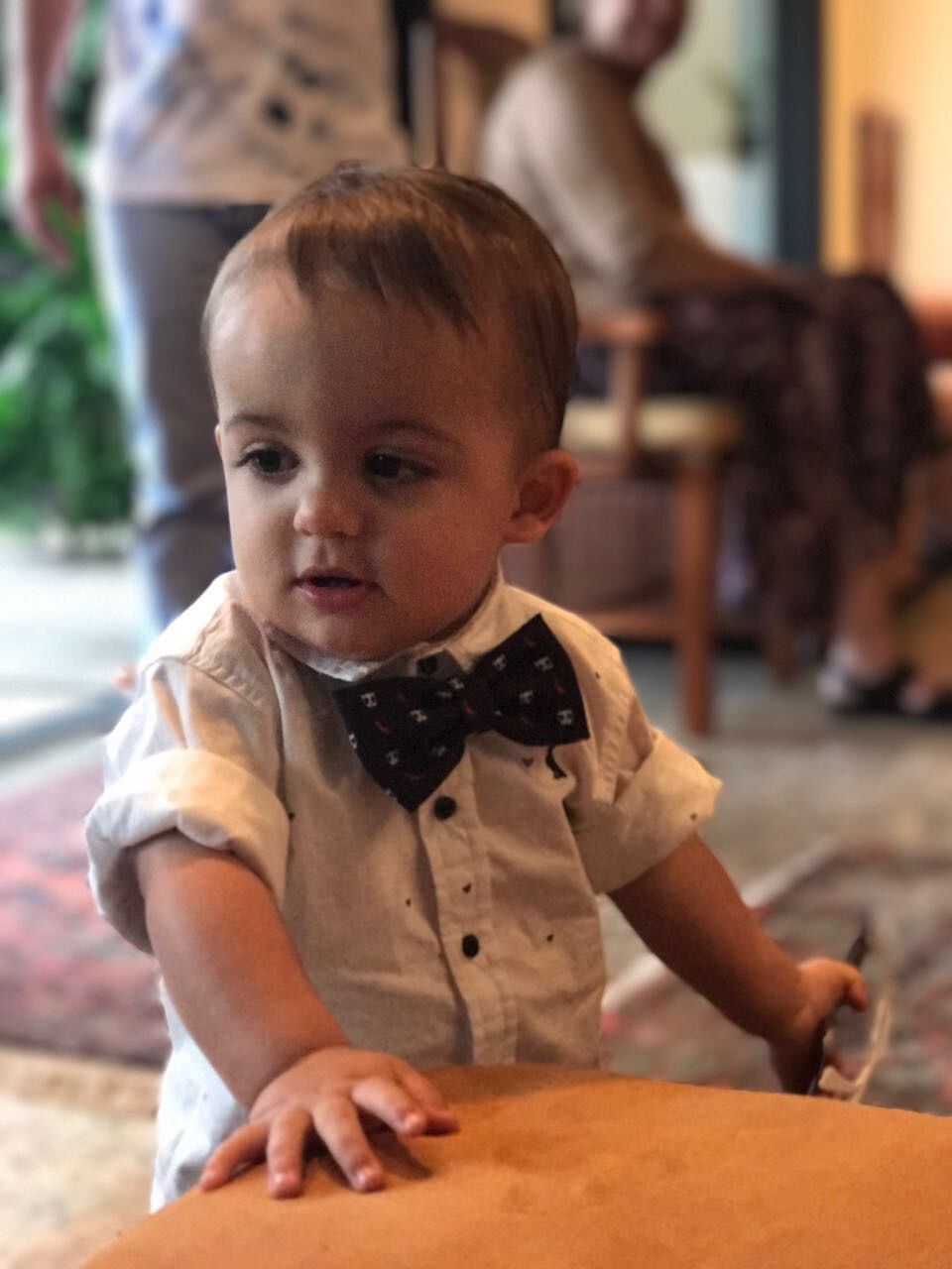 Blusa e gravata borboleta reserva.