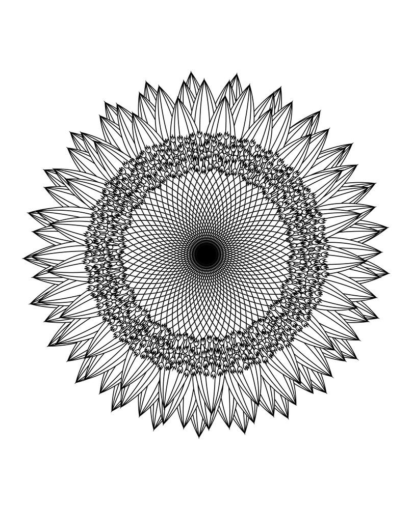 This Mandala Coloring Book For Grown Ups Is The Creative\'s Way To ...