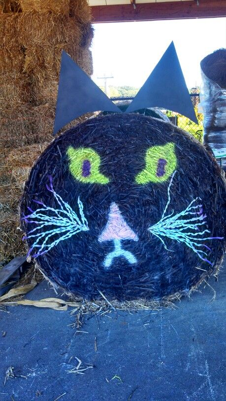 Black Cat Halloween Decor Round Hay Bale Homestead Gardens Maryland Fall Pinterest