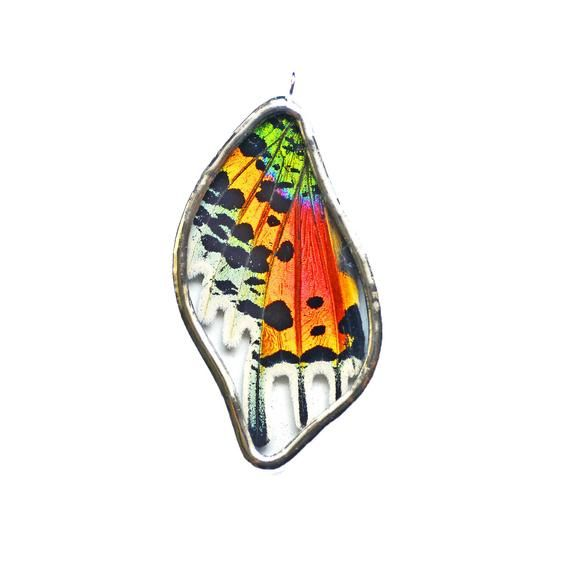 56c0559e2b3967 Real Butterfly Wing Jewelry. Real Butterfly Wing Pendant. Sunset Moth  Necklace. Rainbow Necklace. Pr