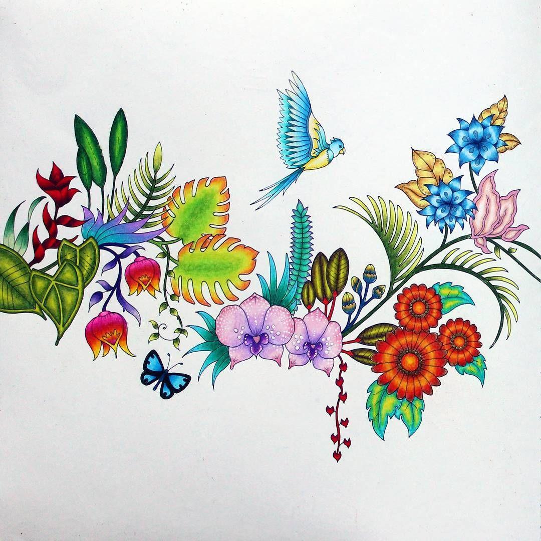 63 best j basford magical jungle images on pinterest