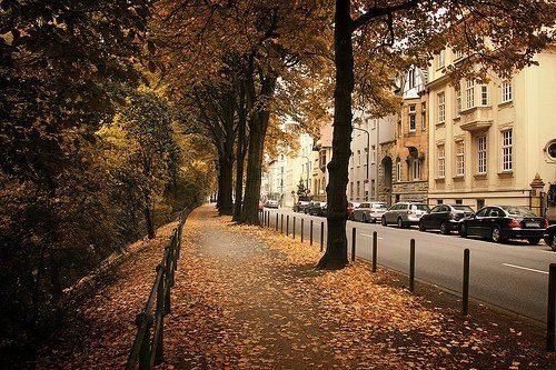 Paris - França.