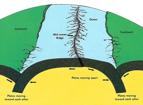 I Like This Picture Because It Shows Where The Mid Ocean Ridge Is