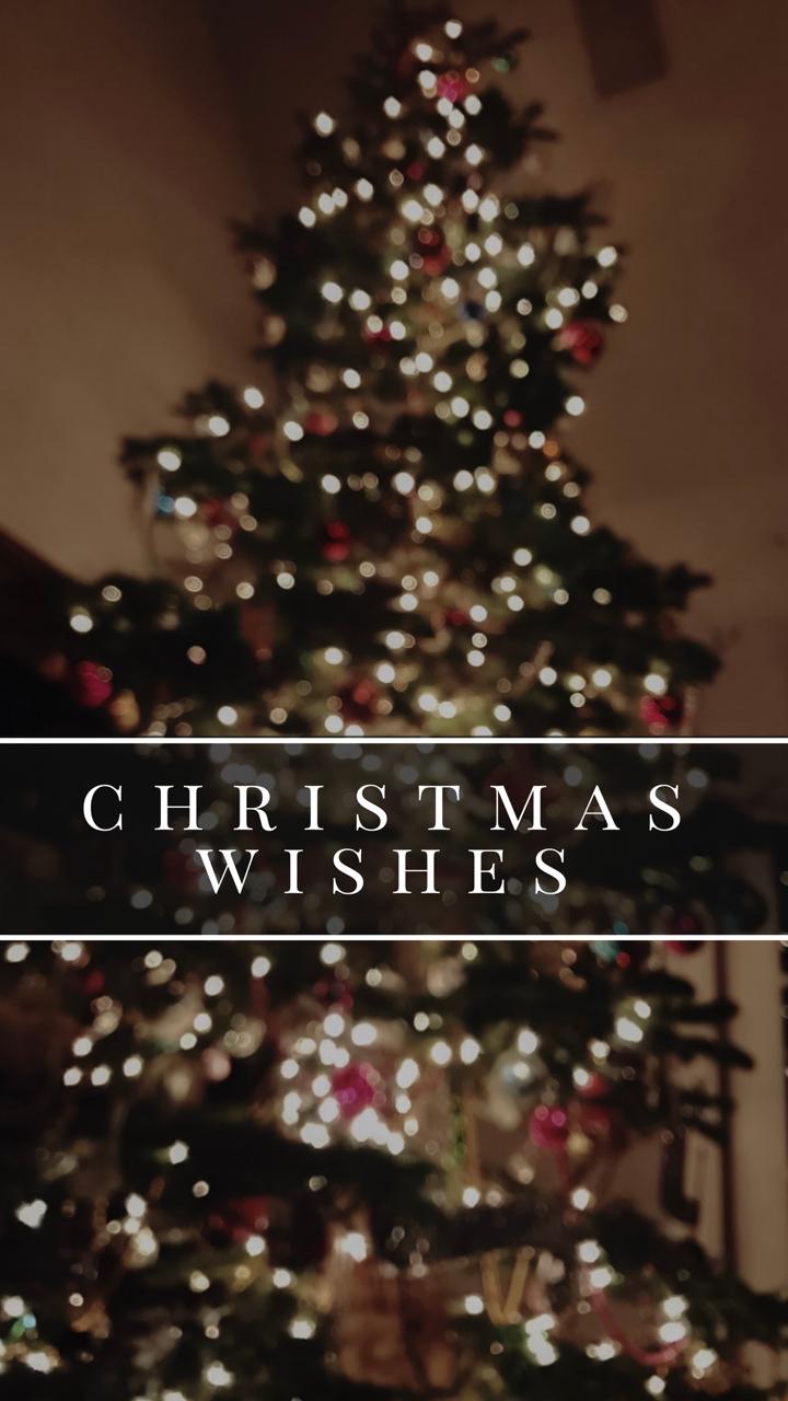 SEASONAL AESTHETICS — Here's another set of Christmas