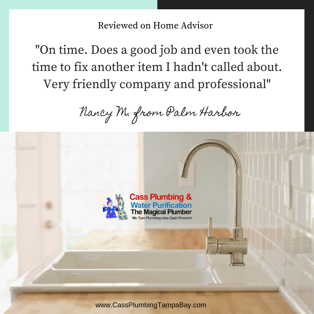Thank You Nancy M From Palm Harbor For Your Glowing Review On Home Advisor We Appreciate And Value You As Our Customer Plumbing Plumber Plumbing Emergency