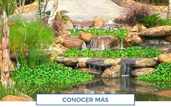 Albercas de calidad construccion de albercas jacuzzis for Cascadas artificiales para jardin