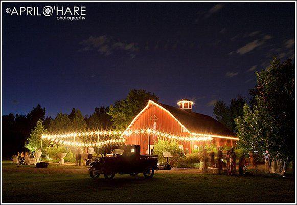 f6e788e39d4c11b816ba5ffd0710c7ab - Denver Botanic Gardens Christmas Lights Chatfield