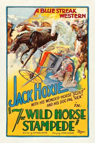 Watch Wild Horse Stampede Full-Movie Streaming