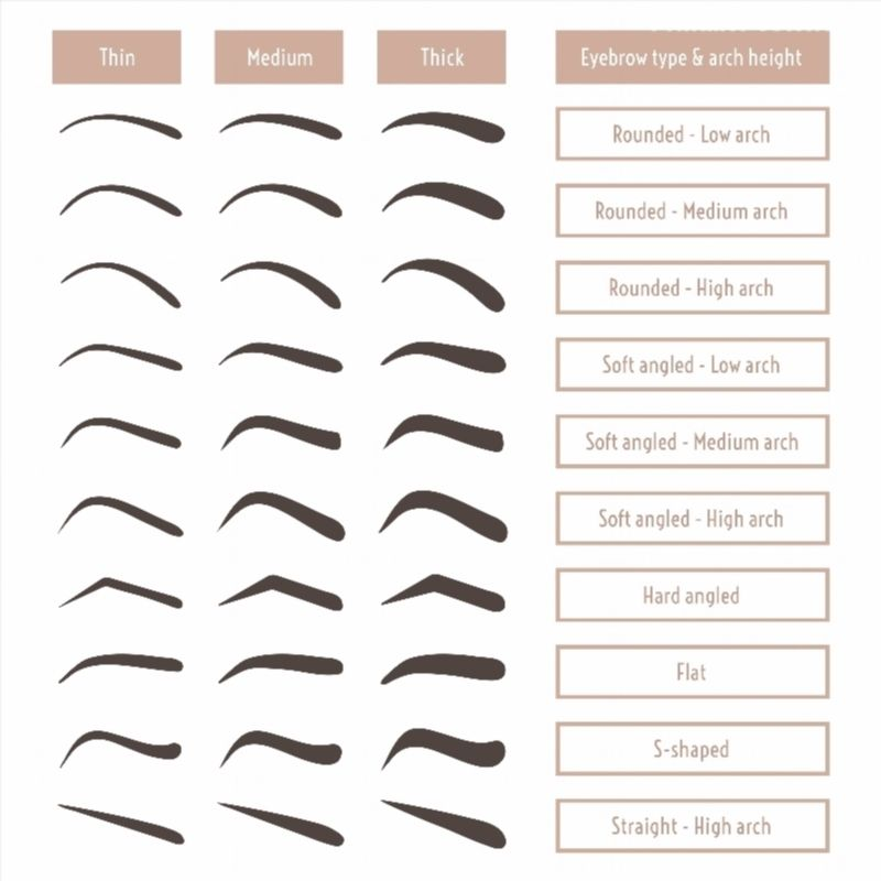 Eyebrow shapes various types of eyebrows classic type and other eyebrow shapes various types of eyebrows classic type and other trimming vector illustration with different thickness of brows set with captions ccuart Gallery
