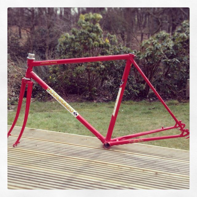 colnago decals steel bike frame ebay 099