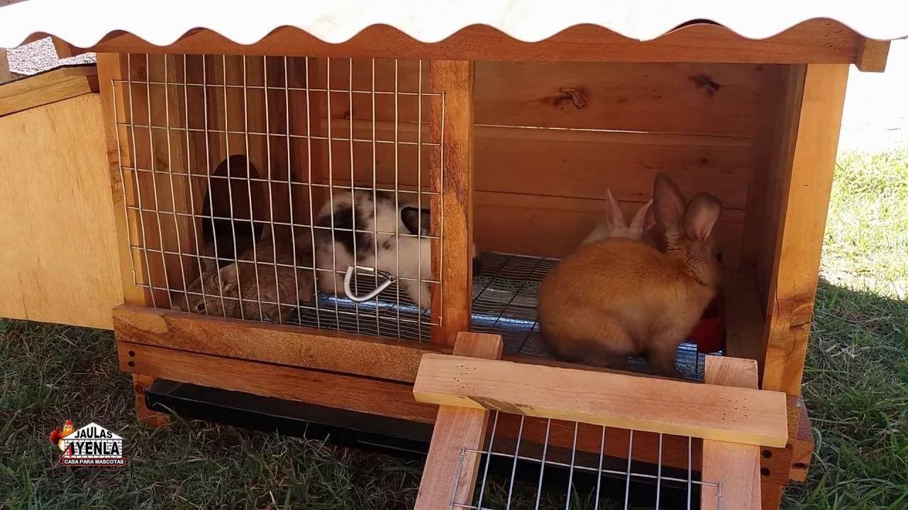 MadrigueraJaulas De Para Conejo Con Jaula wPXZOuTik