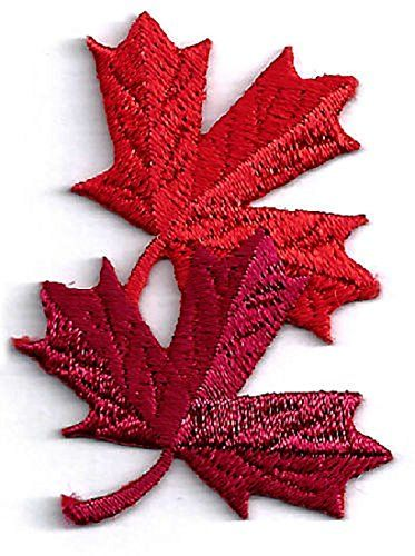 Autumn Fall Leaf Applique Patch Maple Leaf  sew or Iron on =