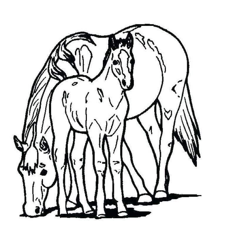 Horseland Scarlet And Aztec In 2020 Horse Coloring Pages Easy Coloring Pages Horse Coloring