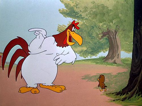 Cartoon Pics And Quotes About Chickens: Cartoon Rooster Foghorn Leghorn