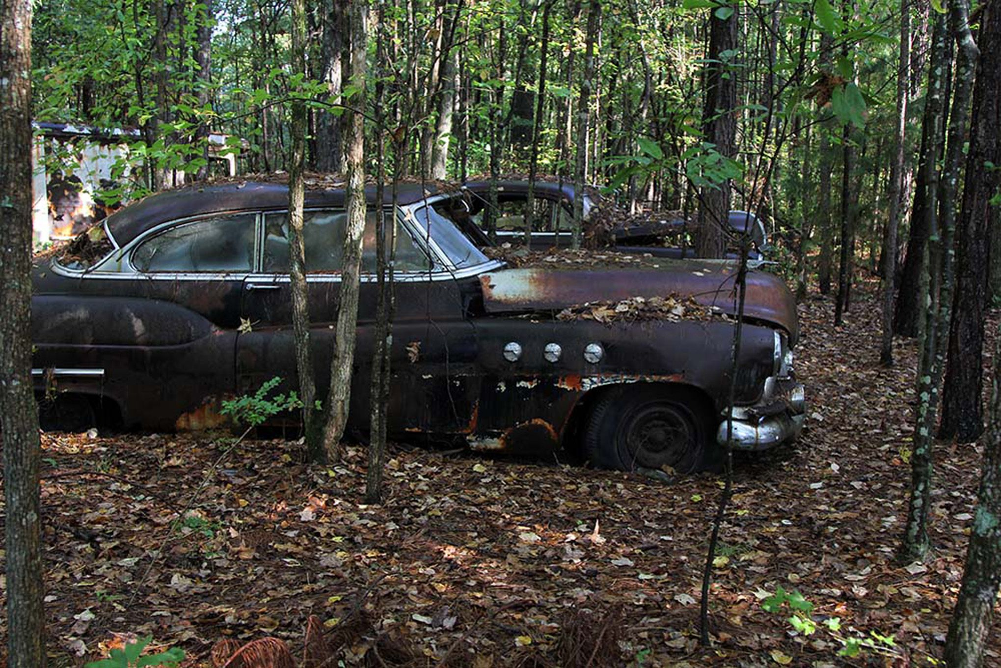 Abandoned autos | ... is Full of Abandoned Muscle Cars and Classics ...